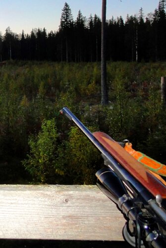 Hunting in Sweden, September 2010.