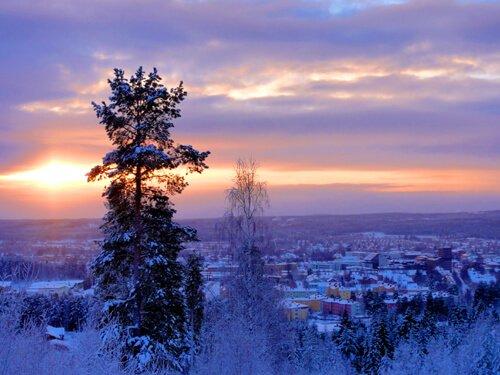 Norrland Winter, Skellefteå