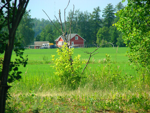 Red houses dot the Finnish and Swedish countryside.