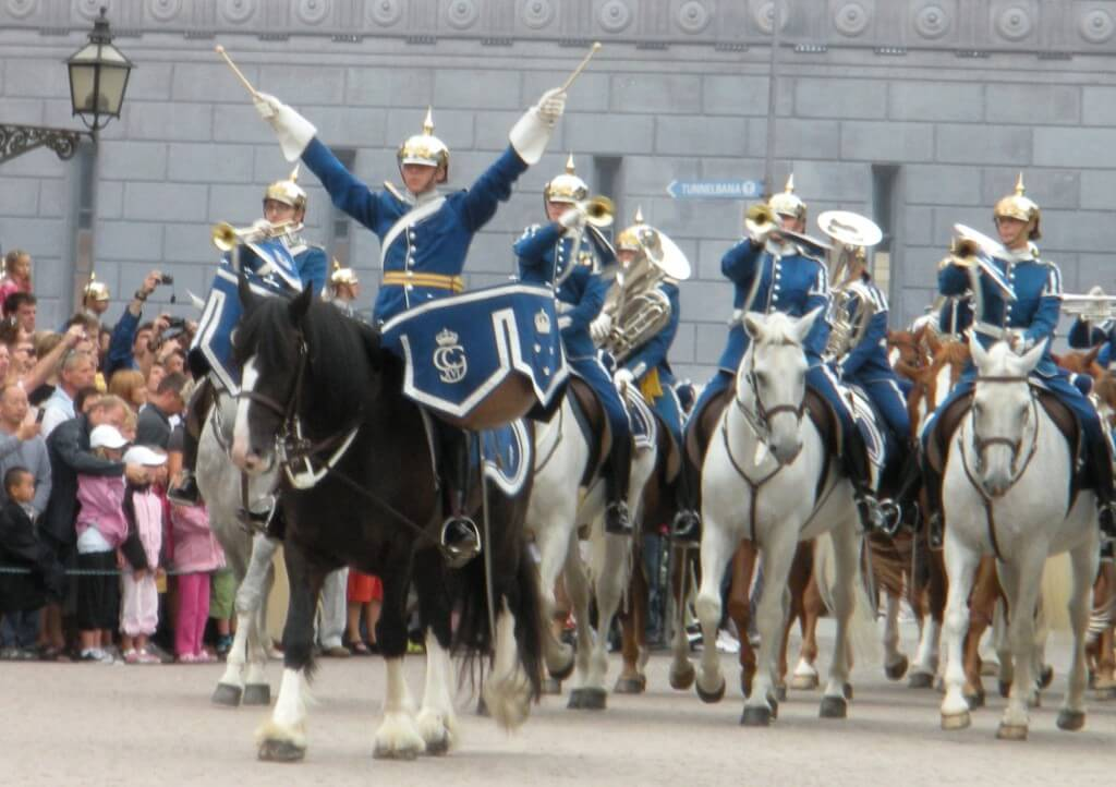 Harry the drumhorse, leads the military band with ease and coolness on their way to changing the guards at the royal castle.