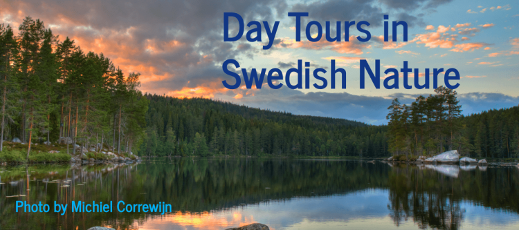 sweden day tours